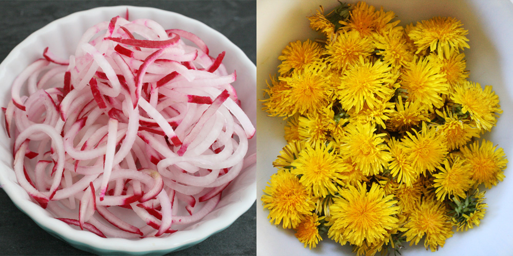 radishes. dandelions. {wholly rooted}